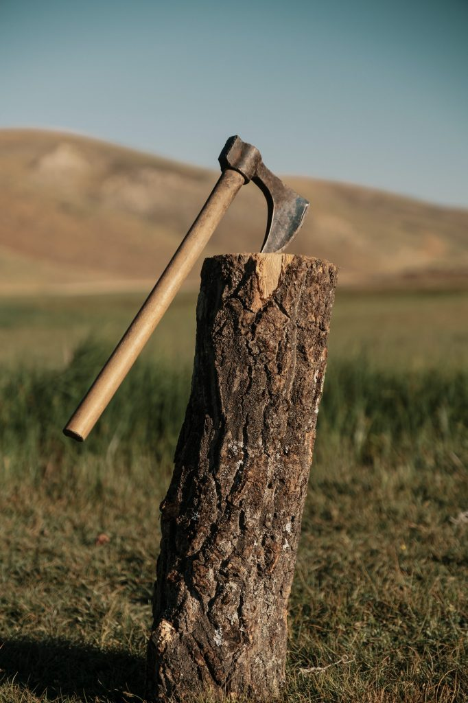 Close up ax in a log on the mountain